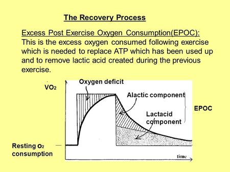 The Recovery Process Excess Post Exercise Oxygen Consumption(EPOC): This is the excess oxygen consumed following exercise which is needed to replace ATP.