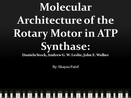 Molecular Architecture of the Rotary Motor in ATP Synthase: Daniela Stock, Andrew G. W. Leslie, John E. Walker By: Shayna Patel.
