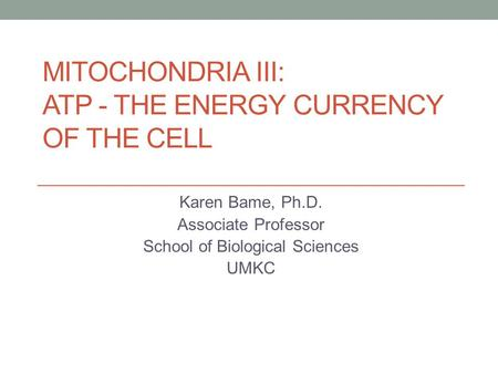 MITOCHONDRIA III: ATP - THE ENERGY CURRENCY OF THE CELL Karen Bame, Ph.D. Associate Professor School of Biological Sciences UMKC.