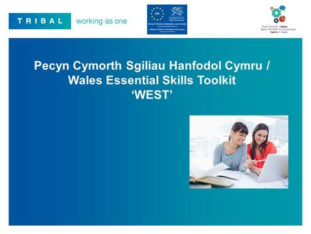 Over the past twelve months Tribal has worked in partnership with the Welsh Government, and an expert user group, comprising experienced stakeholders from.