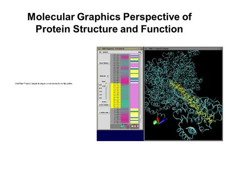 Molecular Graphics Perspective of Protein Structure and Function.