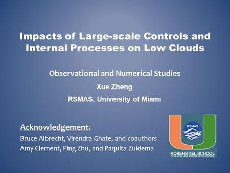 Impacts of Large-scale Controls and Internal Processes on Low Clouds