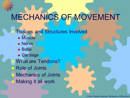 Frolich, Human Anatomy, Mechanics of Movement MECHANICS OF MOVEMENT  Tissues and Structures Involved  Muscle  Nerve  Bone  Cartilage  What are Tendons?