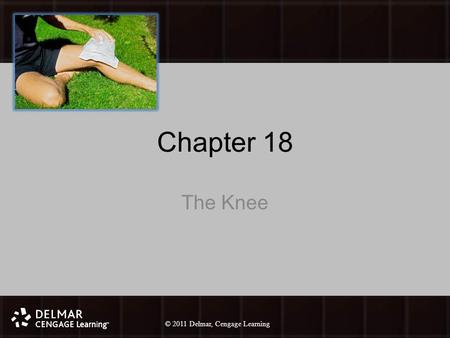 © 2010 Delmar, Cengage Learning 1 © 2011 Delmar, Cengage Learning Chapter 18 The Knee.