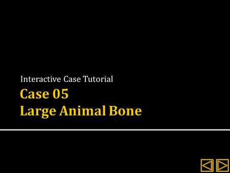 Interactive Case Tutorial.  Review the history and signalment for the client  Evaluate the radiographs provided  Explore the interactive images and.