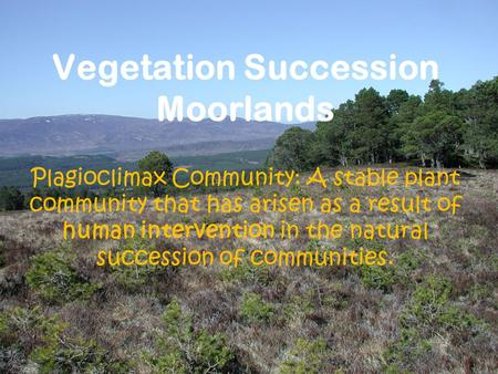 Vegetation Succession Moorlands Plagioclimax Community: A stable plant community that has arisen as a result of human intervention in the natural succession.