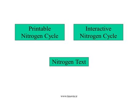 Printable Nitrogen Cycle Interactive Nitrogen Cycle