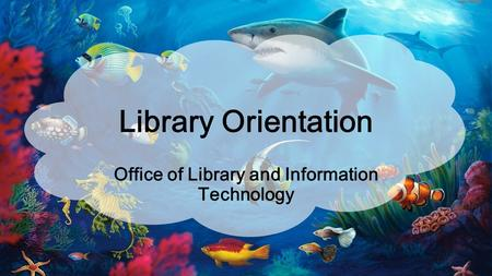 Office of Library and Information Technology