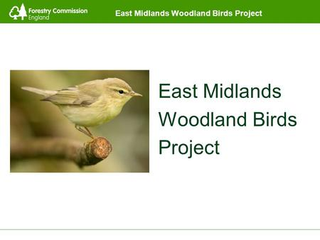 East Midlands Woodland Birds Project East Midlands Woodland Birds Project.
