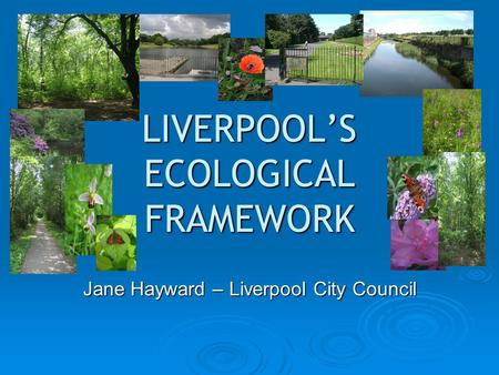 LIVERPOOL'S ECOLOGICAL FRAMEWORK Jane Hayward – Liverpool City Council.