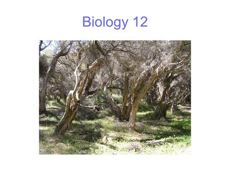 Biology 12. Matter and energy In most natural ecosystems, matter cycles and is re-used Energy flows and is lost At each trophic level most of the energy.