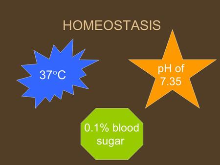 HOMEOSTASIS pH of 7.35 37C 0.1% blood sugar.