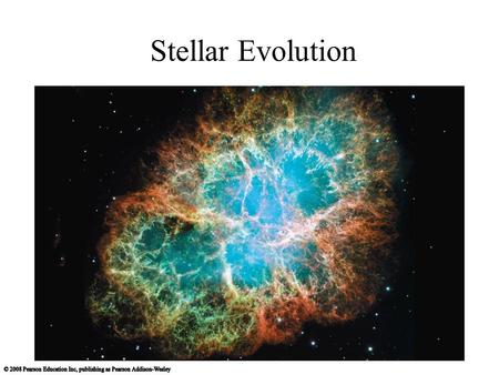 Stellar Evolution. The Mass-Luminosity Relation Our goals for learning: How does a star's mass affect nuclear fusion?
