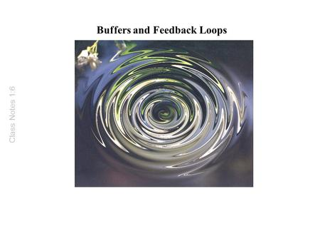 Buffers and Feedback Loops Class Notes 1:6. Buffers and Feedback Loops Buffers are agents or regulatory mechanisms that reduce or minimize fluctuations.