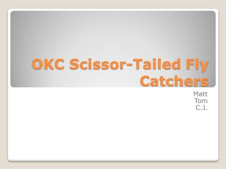 OKC Scissor-Tailed Fly Catchers Matt Tom C.J.. Location Our sports team is located in Oklahoma city, Oklahoma The sport we choose was Football We decided.