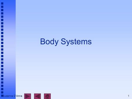 Suzanne D'Anna1 Body Systems. Suzanne D'Anna2 Body Systems n integumentary n skeletal n muscular n nervous n endocrine n cardiovascular n lymphatic and.