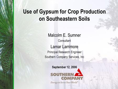 Use of Gypsum for Crop Production on Southeastern Soils Malcolm E. Sumner Consultant Lamar Larrimore Principal Research Engineer Southern Company Services,