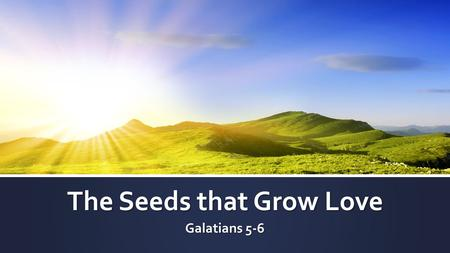 The Seeds that Grow Love Galatians 5-6. I. The contrast.