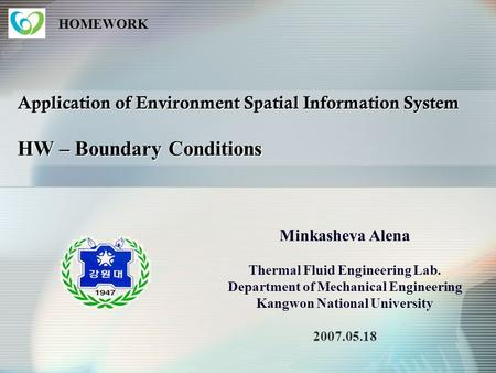 HOMEWORK Application of Environment Spatial Information System HW – Boundary Conditions Minkasheva Alena Thermal Fluid Engineering Lab. Department of.