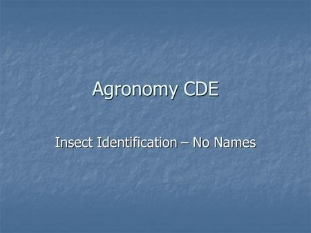 Agronomy CDE Insect Identification – No Names.