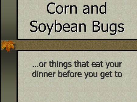 Corn and Soybean Bugs …or things that eat your dinner before you get to.