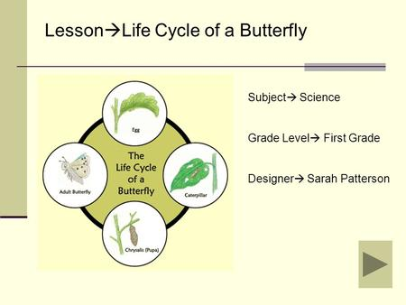 Subject  Science Grade Level  First Grade Designer  Sarah Patterson Lesson  Life Cycle of a Butterfly.