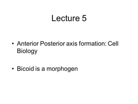 Lecture 5 Anterior Posterior axis formation: Cell Biology Bicoid is a morphogen.