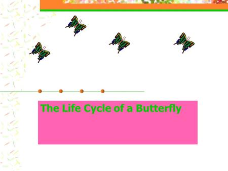 The Life Cycle of a Butterfly. The learner will: be able to name and identify the four stages of a butterfly's life cycle write a paragraph addressing.