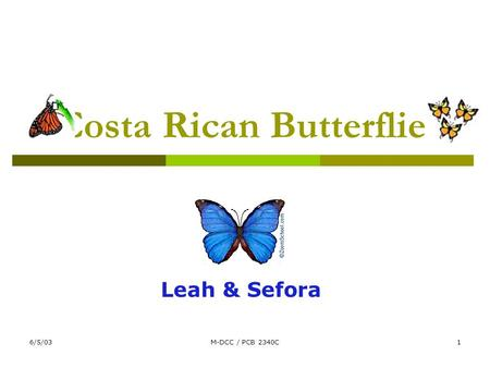 6/5/03M-DCC / PCB 2340C1 Costa Rican Butterflies Leah & Sefora.