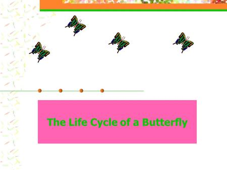 The Life Cycle of a Butterfly. The First Stage of a Butterfly's Life. The egg is the first stage of a butterfly's life.