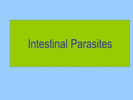 Intestinal Parasites.