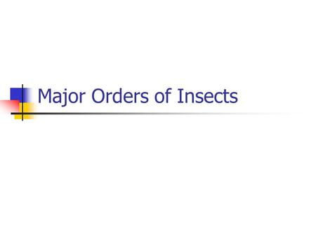 Major Orders of Insects. 1. Grasshopper, cricket, roach, mantid 2. true bug 3. cicadas or leaf or plant hopper 4. beetle 5. fly 6. ant, bee or wasp 7.