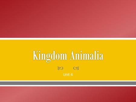 Kingdom Animalia Unit 4.