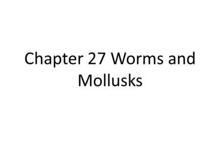 Chapter 27 Worms and Mollusks