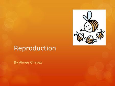 Reproduction By Aimee Chavez. Sexual Vs. Asexual  Sexual reproduction: ( Meiosis) 2 parents and one or many offspring with genetic diversity  Examples: