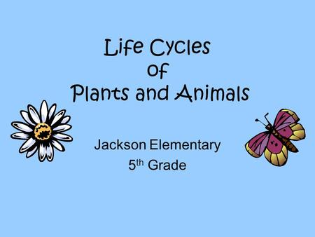Life Cycles of Plants and Animals Jackson Elementary 5 th Grade.