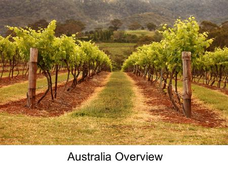 Australia Overview. Wine Regions World's fourth largest exporter of wine with approximately 750 million liters a year –40% of production consumed domestically.