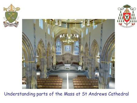 Understanding parts of the Mass at St Andrews Cathedral.