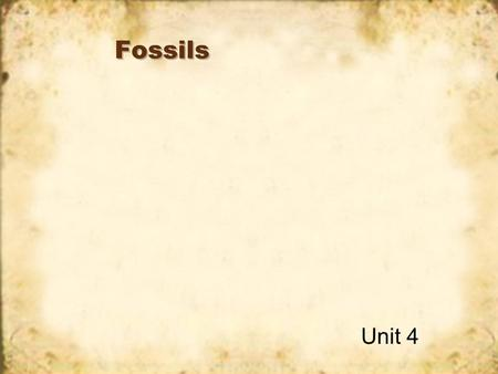 Fossils Unit 4 What are fossils? Fossils are the petrified remains of ancient objects. Petrified – means turned to stone. Ancient – means very, very.