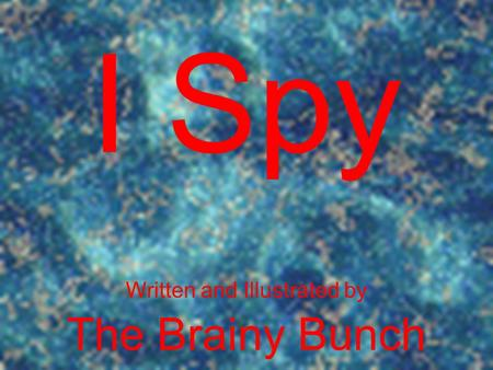 I Spy Written and Illustrated by The Brainy Bunch.