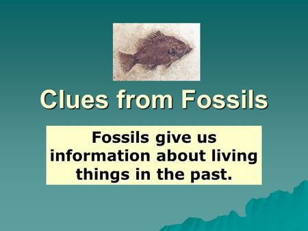 Clues from Fossils Fossils give us information about living things in the past.