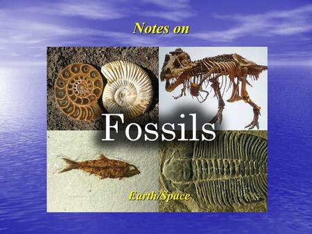 Notes on Fossils (from top left) are of a ammonite (marine); T-Rex; an ancient fish and a trilobite (marine). Earth/Space.