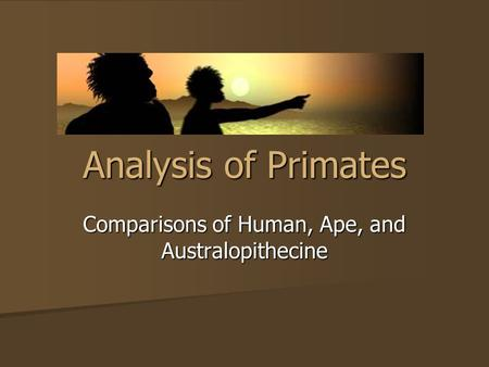 Analysis of Primates Comparisons of Human, Ape, and Australopithecine.