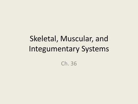 Skeletal, Muscular, and Integumentary Systems