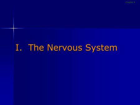 I. The Nervous System chapter 4. Nervous System [p116] Gathers and processes information Gathers and processes information Produces responses to stimuli.