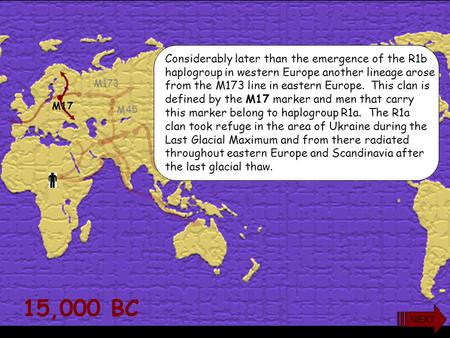 15,000 BC M173 M45 Considerably later than the emergence of the R1b haplogroup in western Europe another lineage arose from the M173 line in eastern Europe.