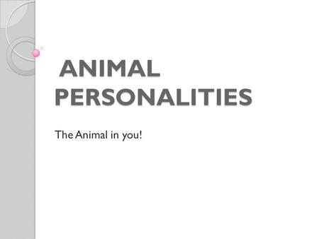 ANIMAL PERSONALITIES ANIMAL PERSONALITIES The Animal in you!