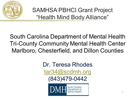 1 South Carolina Department of Mental Health Tri-County Community Mental Health Center Marlboro, Chesterfield, and Dillon Counties Dr. Teresa Rhodes