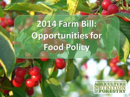 2014 Farm Bill: Opportunities for Food Policy. Joe Shultz Chief Economist U.S. Senate Committee on Agriculture, Nutrition and Forestry.