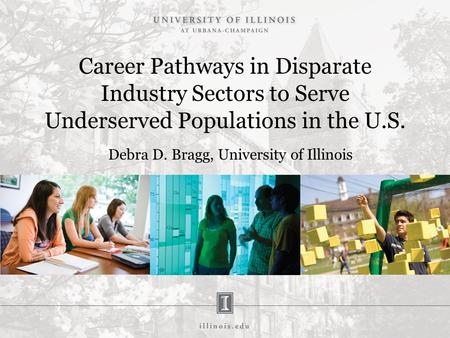 Career Pathways in Disparate Industry Sectors to Serve Underserved Populations in the U.S. Debra D. Bragg, University of Illinois.